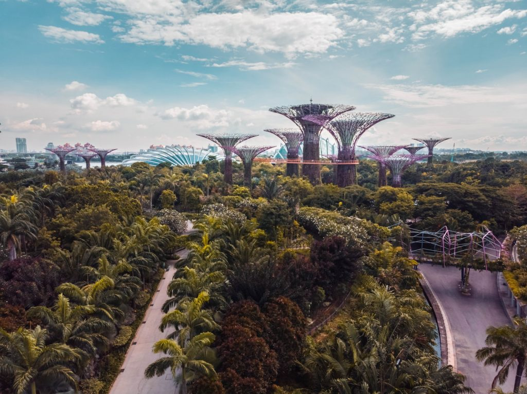 Organic architecture of Gardens by the Bay, Singapore. Image by Victor Garcia / Unsplash.